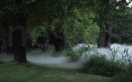 Fog installation Isola Martella