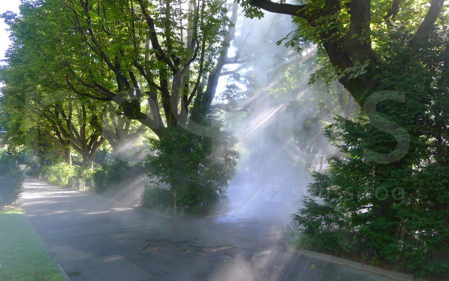 parco Antognini Bellinzona